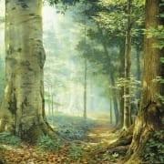 sacred grove contemplative forest woods greg olsen