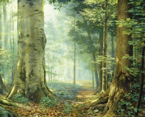 sacred grove contemplative forest woods greg olsen