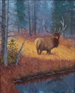 bull elk wildlife forest meadow james reid artist