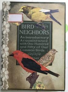 Bird Neighbors junk no rules journal birding trudy love tantalo