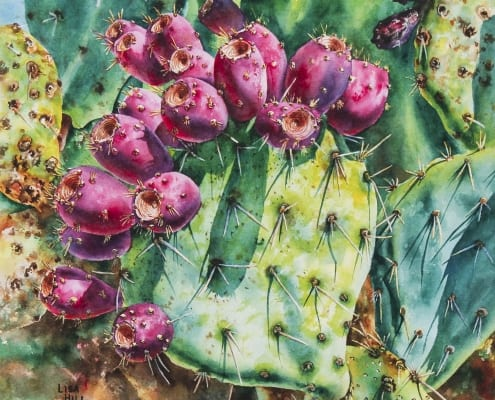 Opuntia Fruit colorful Southwest watercolor Lisa Hill