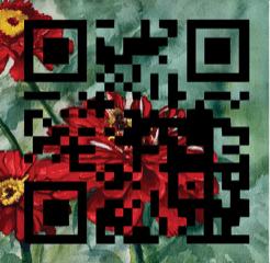 bee zinnia qr code artwork blocks lorna barth