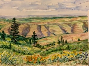 mountain palouse landscape view watercolor painting wilderness helen boland
