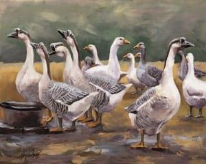 gaggle geese honking communicating water bucket jordan henderson art